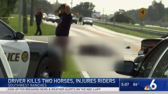 Riders Recovering After Crash That Killed Horses