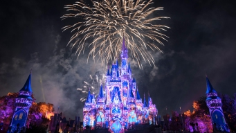 Disney Offers Multi-Day Ticket Deal For Florida Residents