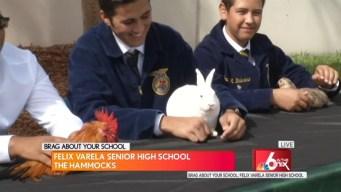 Brag About Your School: Felix Varela Senior High