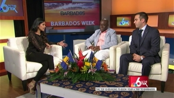 The Top 10 Reasons to Fly to Barbados