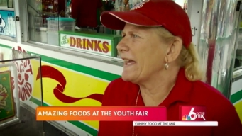Miami-Dade Youth Fair: Tasty Food Options