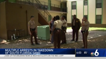 25 'Yellow Tape' Gang Members Arrested in Miami-Dade Raid: Police