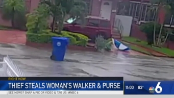 Man Knocks Over, Robs Elderly Woman With Walker: Miami Police