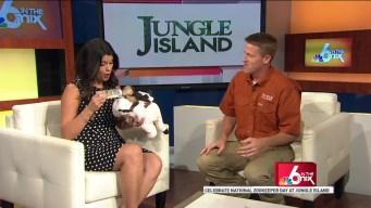 Jungle Island: Zoo Keeper Week