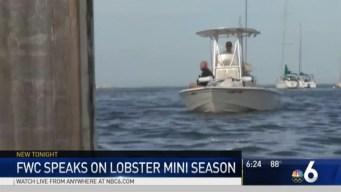 Lobster Mini Season Set to Begin in Florida