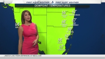 Cool Down Expected to Breeze Through South Florida