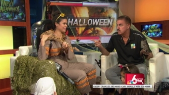 "Halloween: ""Scary Animals"" with Ron Magill"