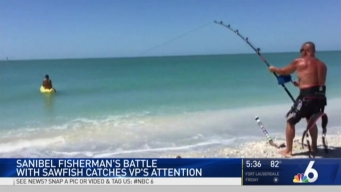Sanibel Fisherman's Sawfish Battle Catches VP's Attention