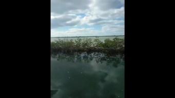 Key West Jet Crash
