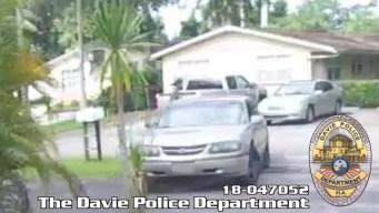 Man Caught on Camera Stealing Pit Bull, Burglarizing Home