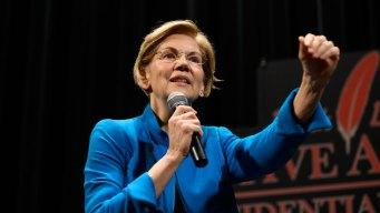 Warren Turns Corporate Criticism Into Bona Fides in '20 Race