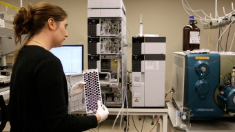 Scientists Feel Chill of Crackdown on Fetal Tissue Research