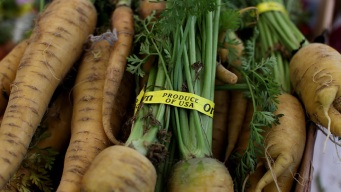 Community-Based Group Teaches About Organic Foods