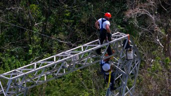 Puerto Rico Says It's Scrapping $300M Whitefish Contract