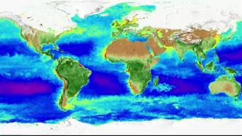 NASA Captures 20 Years of Seasonal Changes