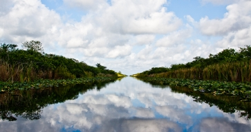 Everglades Restoration Monitoring Slashed