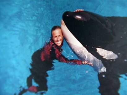 Dawn LoVerde Brancheau seaworld killer whale