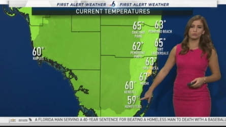 Miami Weather Forecast -- 5:15 AM -- January 20, 2017