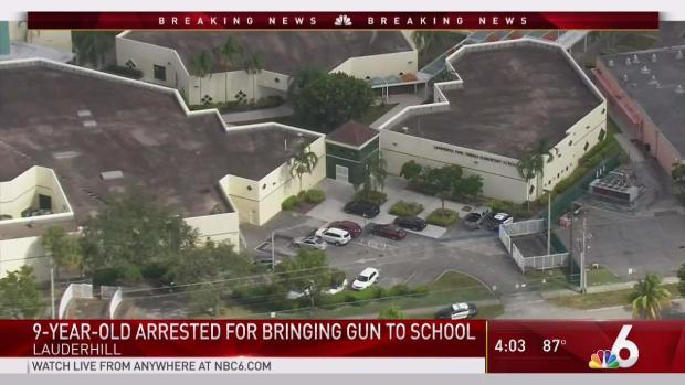 [MI] 9-Year-Old Brought Gun to School: Lauderhill Police