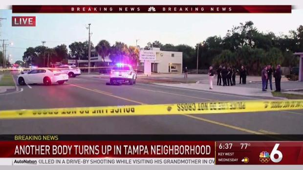 [MI] Another Body Found in Tampa Neighborhood