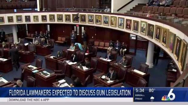 [MI] Florida Lawmakers Expected to Discuss Gun Legislation