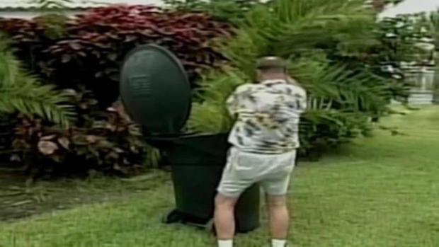 [MI] Florida's Palm Trees Threatened by Invasive Disease
