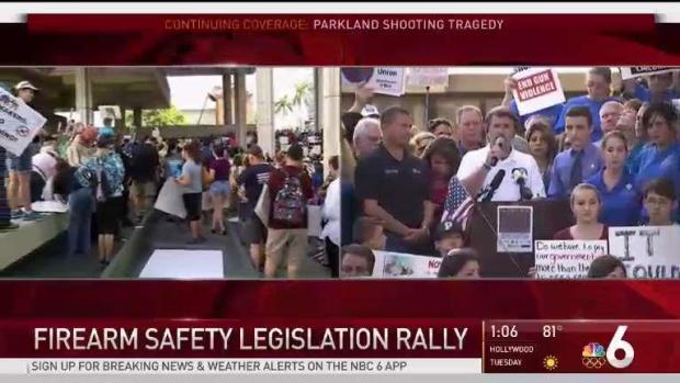[NATL-MI] Hundreds Gather at Gun Control Rally