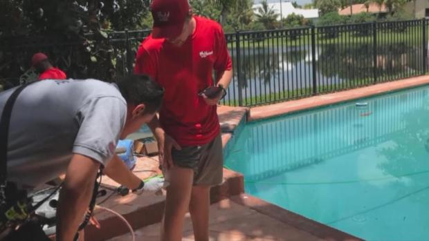 [NATL-MI] South Florida Iguana Hunter Misses Target, Shoots Pool Boy