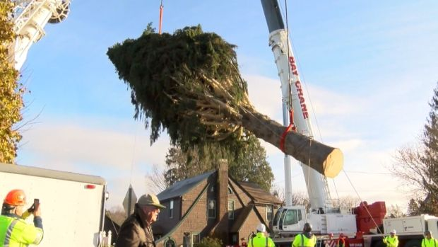 [NATL] Rockefeller Center Christmas Tree Is on Its Way to NYC