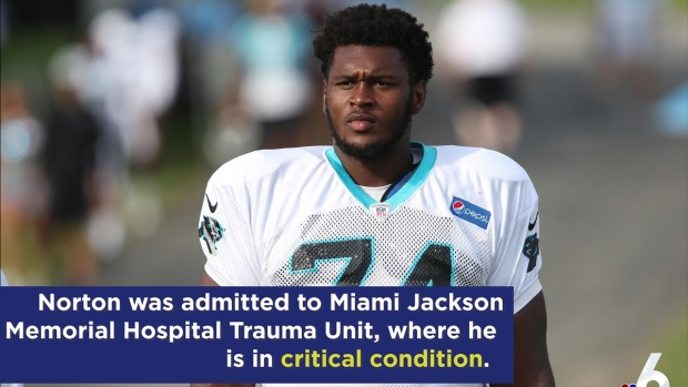 [MI] Dolphins Player Loses Arm in Early Morning Car Accident