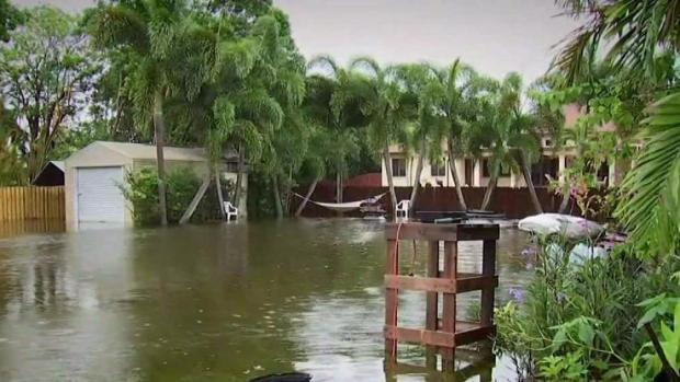 Plantation Starting to Recover From Flooding Issues