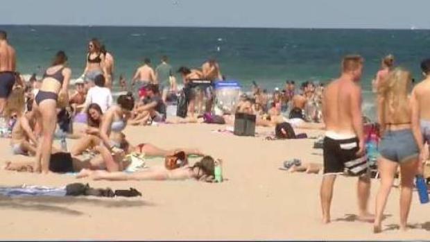 [MI] Spring Breakers Pack South Florida Beachers