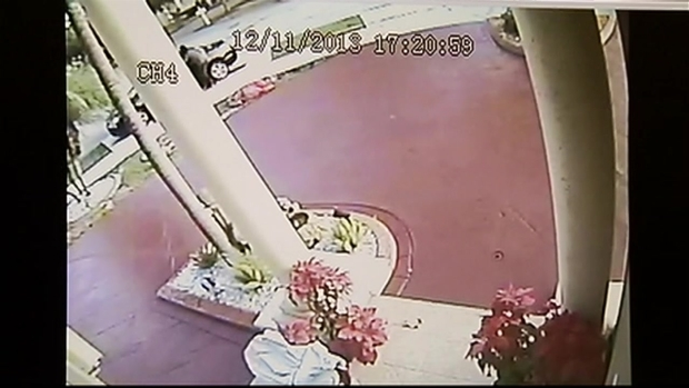 [MI] RAW VIDEO: Surveillance Video of Miami-Dade Grinches