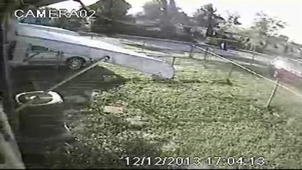 [MI] RAW VIDEO: Police Release Surveillance of Miami Gardens Hit and Run