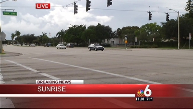 [MI] Grandmother Killed, 2 Children Injured After They're Struck By Car in Sunrise