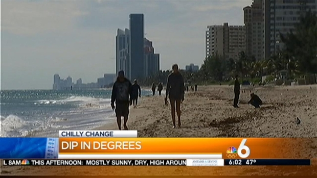 [MI] Locals and Tourists Brave Cold South Florida Weather