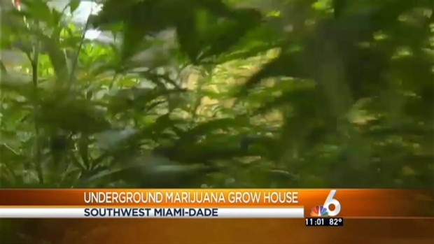 [MI] Underground Grow House Found in SW Miami-Dade