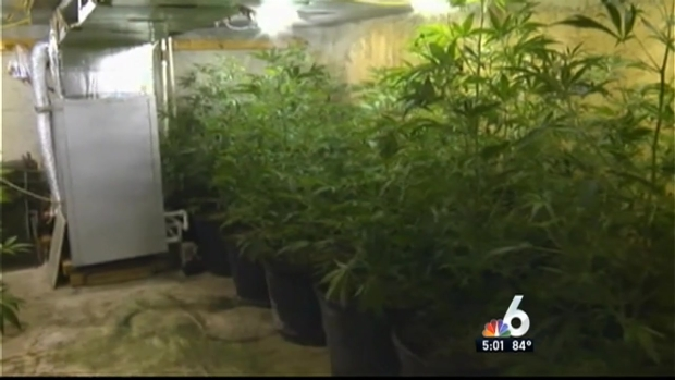 [MI] Underground Grow House Discovered at Southwest Miami-Dade Home