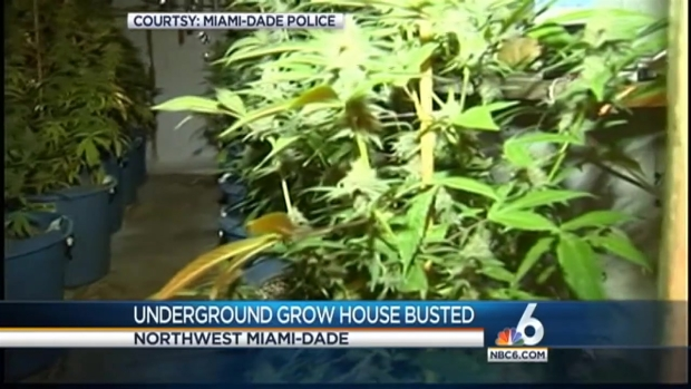 [MI] 4th Underground Grow House Busted In Miami-Dade County In A Week