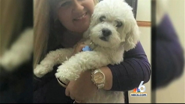 [MI] Boynton Beach Family Says Dog Sitter Stole Dog