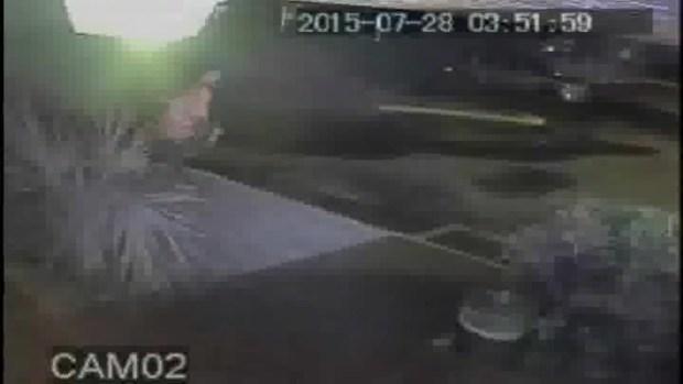 [MI] RAW VIDEO: Smash-and-Grab Burglars Caught on Camera