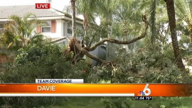 [MI] Bad Weather Hits South Florida