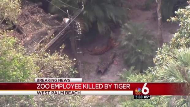 [MI] Zookeeper Dies After Tiger Incident at Palm Beach Zoo