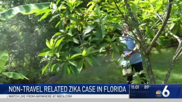 [MI] Potential Zika Case has South Florida Residents, Doctors Concerned