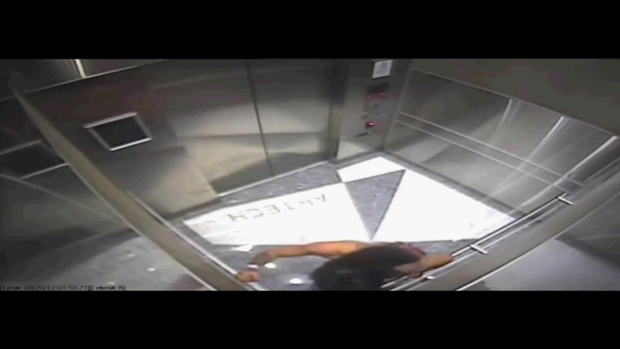 [MI] Camera Catches Woman Kicking Dog in Elevator in Aventura