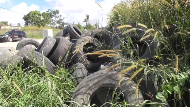 [MI] Man Arrested for Illegal Landfill in Miami