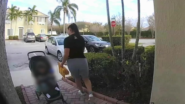 [MI] Woman Pushing Baby Stroller Steals Packages Off Porch