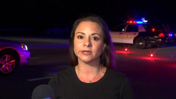 [MI] Driver Killed After Tesla Crashes Into Davie Tree, Bursts Into Flames
