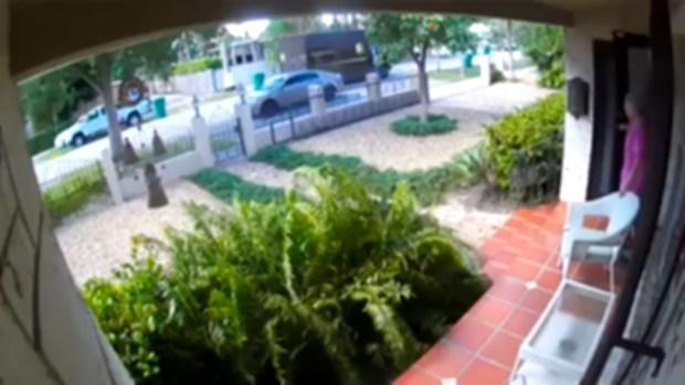 [MI] UPS Delivery Scam Suspect Caught on Camera