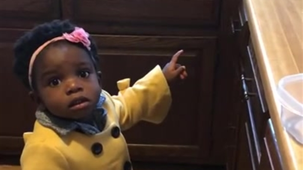 'Alexa! Play Baby Shark!': Tot's Quest for Song Goes Viral